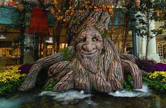 Bellagio Conservatory Harvest exhibit, large tree with face-winter fun for kids
