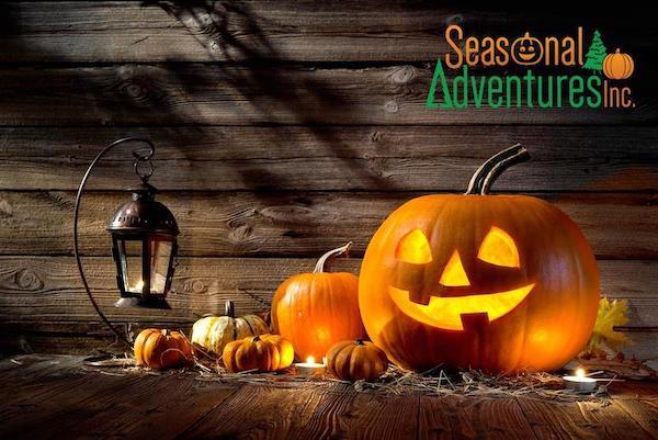 halloween events seasonal adventures pumpkin patch