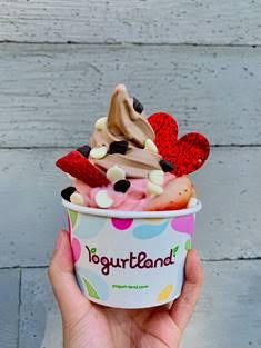 yogurtland valentine's day gift card bonus